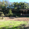 Olive Farm Camp