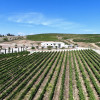 Akash Winery & Vineyard Camping