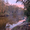 Shady Acres Colo River- Powered