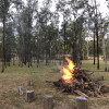 Ballogie Bush Camp