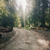 Entire Farm: Camp, Sauna, Glamping