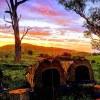 Escape Farm Camping