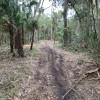 Homosassa Preserve 20 Acre Retreat