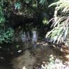 Pamona Park Camp Site