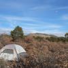 The NMGC camp