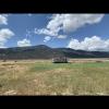semi level natural pasture grass