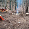 Endless Forest Tent and RV Site