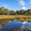 Loddon River Camp