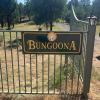 Bungoona Bush Camping