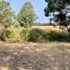 Vasse Valley Bush Camp