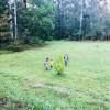 Bula Bush Camp