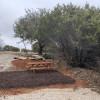 Tent Site 11
