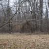 Hootin Hollow  13.96 acre