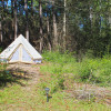 Canvas tent in Mississippi Pineland
