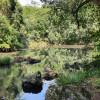 Anandaland: Land of Bliss