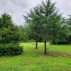 The Cedars - (Small Grp Site)