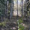 High elevation remote wilderness