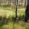 Heathcote Bushcamp