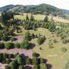 The Arboretum - Shady Grove