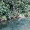 Booloumba Creek Campsites