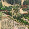The Arboretum - Cedars