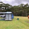 Figtree Camp Farm Campsites