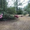 Flamingo Campsite