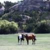 C2T Ranch on the Saline - Primitive