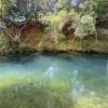 The Knoll- Waterhole