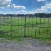 Llandilo Farmland Camping