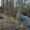 Mosier creek