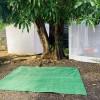 ❤️ of Haleiwa Tent Spot