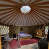 Cozy Yurt in the Forest