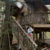 Bilbo's Abode Treehouse