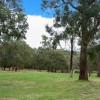 """""""Kookaburra"""" Treed Campsite"""