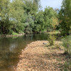 River Bank Bush Camp