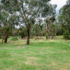 """Kangaroo"" Private Treed Campsite"