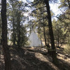 Pine Forest Tipi with Views!