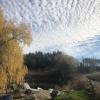 Willow Acres Campsite - 185 acres