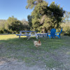 Loomerland Ranch/Farm Tent Spot 1