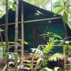 Daintree Rainforest Bungalows