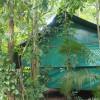 Daintree Quandong Safari Hut