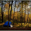 Turkey Gap Camp at Moose Manor Farm