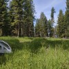 Gold Forest Glamping, Amazing Views