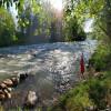 Camp Twilight:  Riverfront Mt Hood