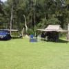 Wild Nymboida Camping