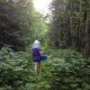 Tent Forest Campsite #1