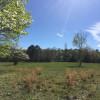 Front field near Shakori Hills