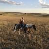 Prairie with pond