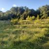 #4 Prairegrass Field site